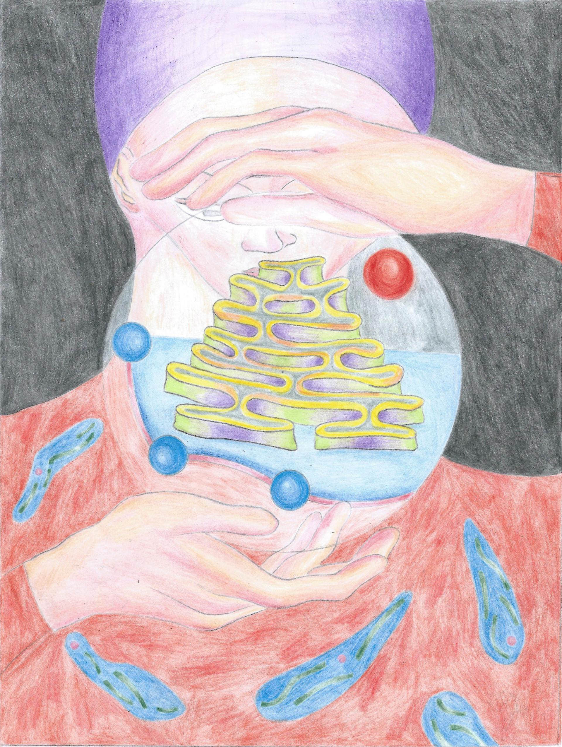 Charlène Guyon–Mathé Drawings